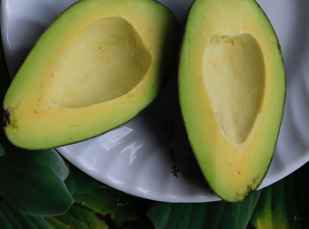 avocado-bright-color-997389