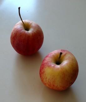 whoe apples.jpg